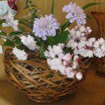 竹篭の水盤に庭の花々を生けて