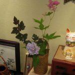 京鹿の子と山あじさい秋篠てまりを飾ってみた