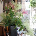 庭のスモークツリーを店に飾りました