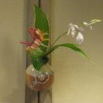 鳴海織部の掛け花入れに庭の花